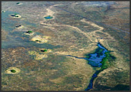 Aerial photograph of the plains of Kafue National Park, Zambia