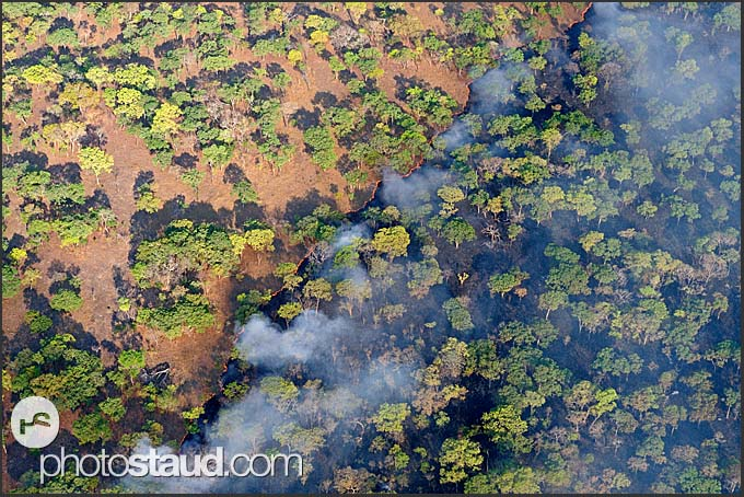 Fire line, aerial view of Zambian landscape in fire, Zambia