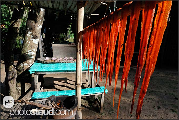 Selling dried snakes, Cambodia