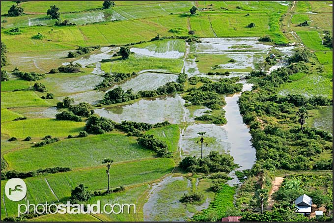 Flooding in the fields, Cambodia