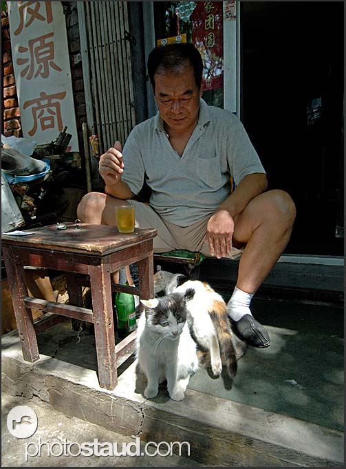 Old man and cat sitting outside his courtyard house in a Beijing Hutong, China