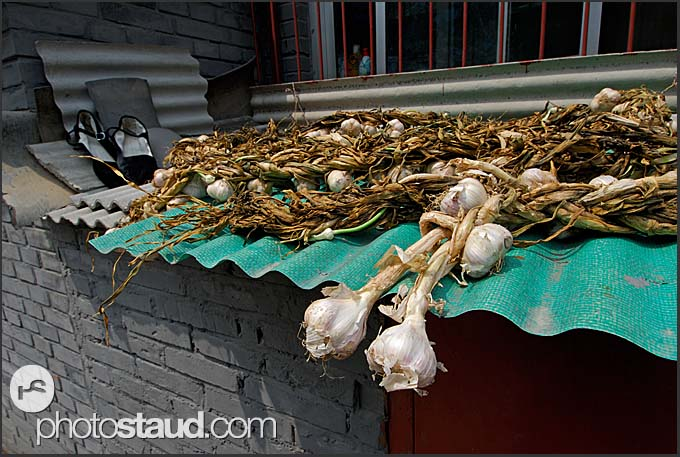Onion being dried on the roof of Beijing Hutong house, China