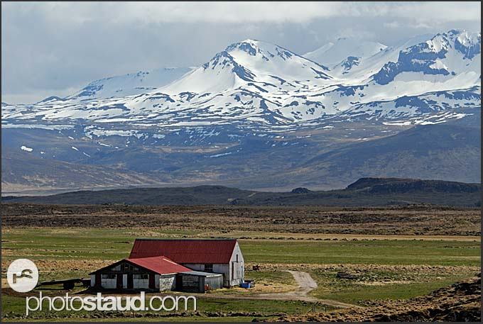 Sheep farm with Mt. Hekla in the background, Iceland