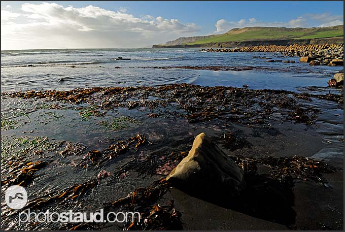 Seaside near Kimmeridge, Jurassic Coast World Heritage site, Dorset, England, Europe