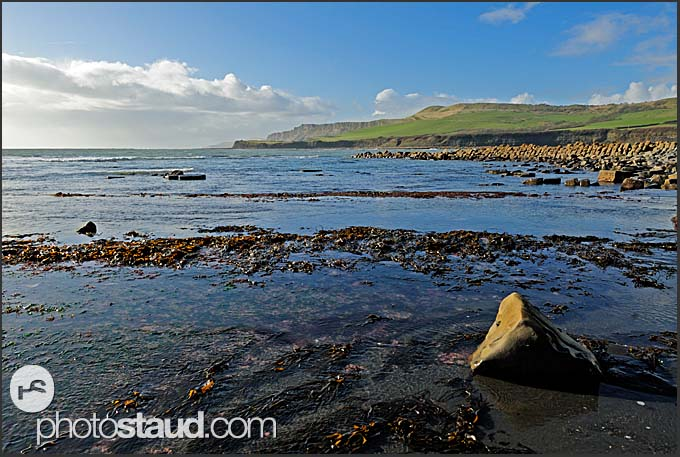 Seaside near Kimmeridge, Jurassic Coast World Heritage site, Dorset, England, Europe