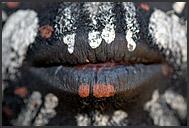 Mouth in detail - dark-painted Kikuyu tribesman, Kenya