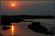 Landscape of South Luangwa National Park, Zambia