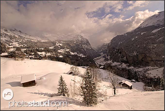 Winter Alpine landscape, Wengen, Switzerland, Europe