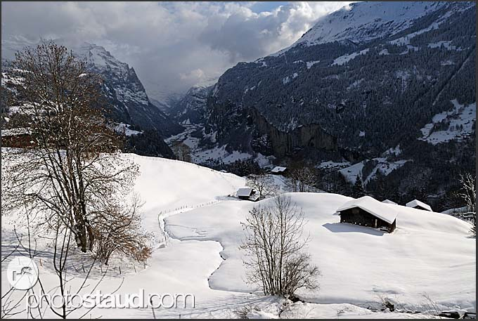 Winter landscape of the Swiss Alps, Wengen, Switzerland, Europe