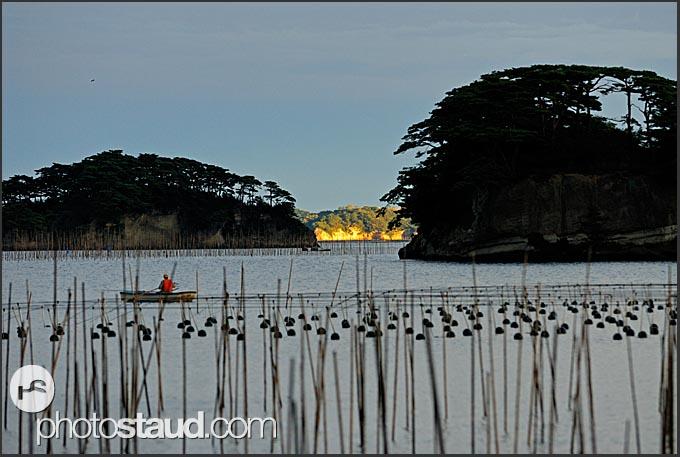Fisherman in boat controls underwater farms in Matsushima bay, Japan