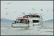 Japanese tourists feeding seagulls on boat, Matsushima Bay, Japan