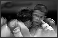 Fighters trading punches during Muay Thai kickboxing fight, Lumpini Boxing Stadium, Bangkok, Thailand