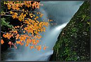 Detail of Ryuzu Falls, Nikko National Park, Japan