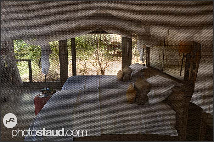 Throughout the net - interior of Pafuri Camp, Kruger National Park, South Africa