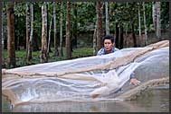 Fisherman pulling his net, Cambodia