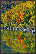 Autumnal landscape reflected in Biwaike pond, Shiga Kogen Heights, Joshin-etsu National Park, Japan