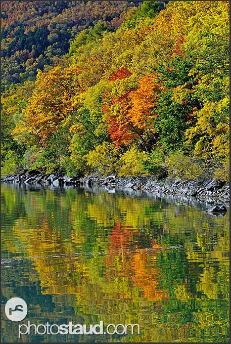 Autumnal foliage reflected in Biwaike pond, Shiga Kogen Heights, Joshin-etsu National Park, Japan