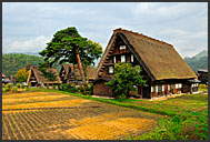 Rural farmhouses, gassho zukuri (hands in prayer), UNESCO World Heritage site, Shirakawa village, Japan