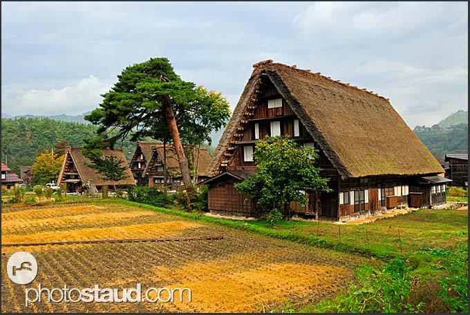 Gassho zukuri thatched roof houses in Shirokawago Ogimachi, Japan