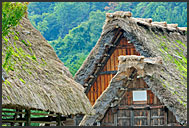 Thatched roofs of gassho zukuri, hands in prayer, farm houses, Shirakawa village, UNESCO World Heritage site, Japan