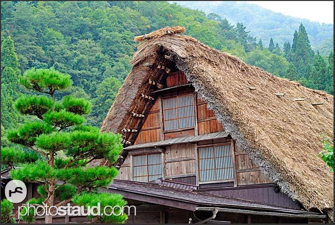 Thatched roofs of gassho zukuri, hands in prayer, farm houses, Shirakawa village, UNESCO World Heritage site, Japan