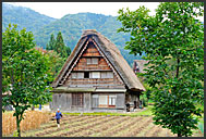 Landscape in Shirakawa with thatched gassho zukuri farm houses, Shirakawa village, UNESCO World Heritage site, Japan
