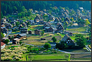 Traditional Japanese houses in Shirakawa village viewed from above, Japan