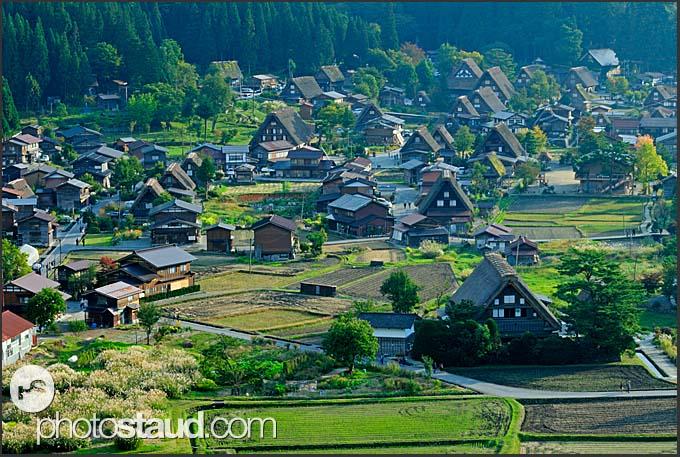 Traditional Japanese farmhouses in Shirakawa village viewed from above, Japan