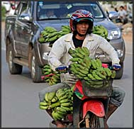 Cambodian people riding motorbike in the streets of Siem Reap, Cambodia
