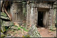 Ruins of Ta Prohm Temple, Angkor, Cambodia