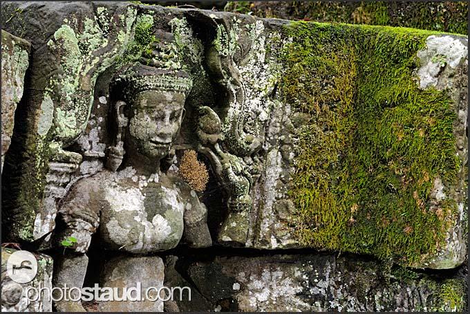 Stone reliefs in Ta Prohm Temple, Angkor, Cambodia