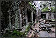 Ancient ruins of Ta Prohm Temple, Angkor, Cambodia