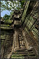 Beautiful ruins of Ta Prohm Temple, Angkor, Cambodia