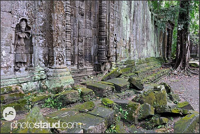 Ruins of Ta Prohm Temple, Angkor, Cambodia