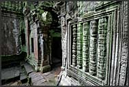 Ancient ruins of Ta Prohm temple with tree roots, Angkor Wat, Cambodia