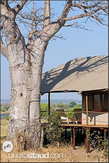Toka Leya Camp - luxurious lodge in Mosi-oa-Tunya Park, Zambia