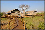 Wooden walkways snaking between Toka Leya tents, Mosi-oa-Tunya Park, Zambia
