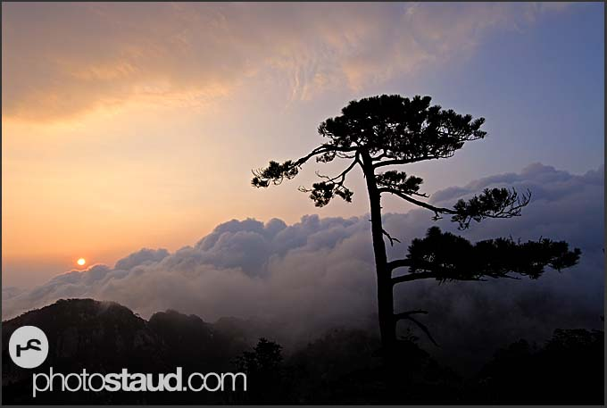Sunrise over the Sea of Clouds, Yellow Mountains, Huangshan, Anhui, China