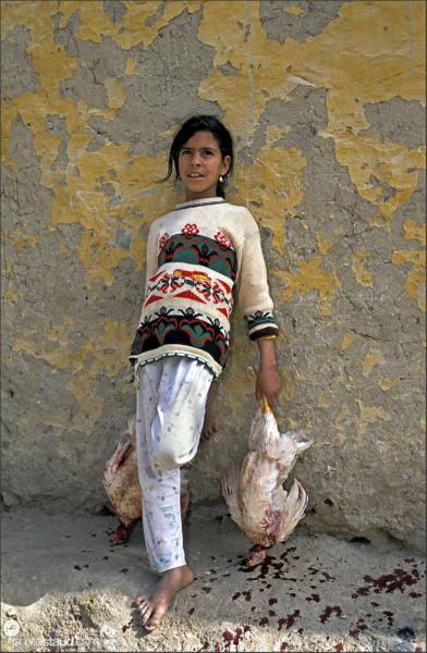 Egyptian girl with dead chickens in hands, El Bawiti, Bahariya Oasis, Libyan Desert, Egypt