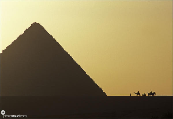 Caravan of camels approaching the Great pyramid of Giza, Egypt
