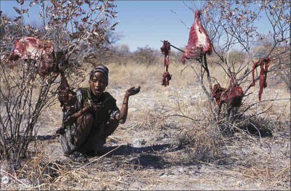 Bushman squatting with Oryx meat hanging above, Bushmanland, Namibia