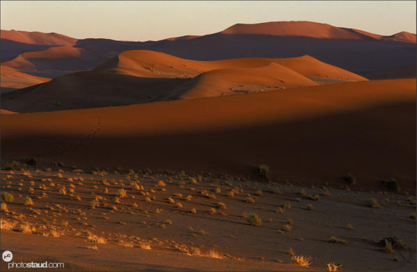 Early morning in the sand dunes of Namib Desert, Sossusvlei, Namibia