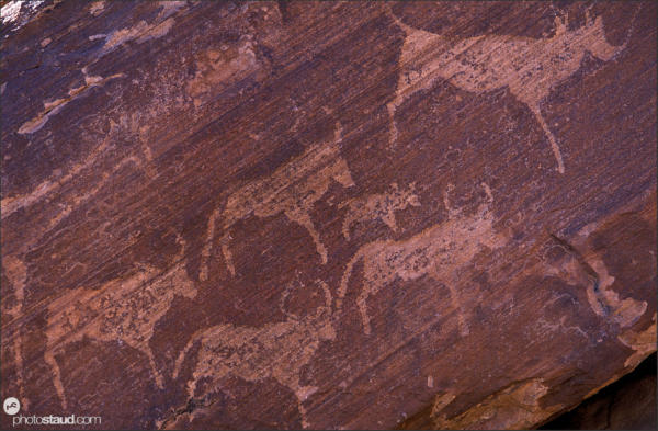 Rock illustrations in Damaraland, Namibia