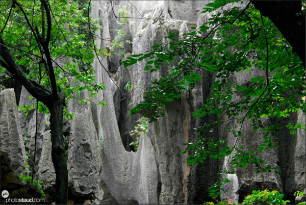 Shilin – stone forest near Kunming, Yunnan, China