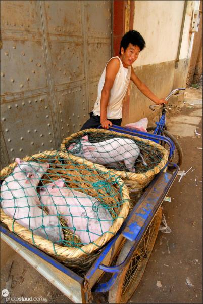 Of pigs and men – Wase market, Yunnan, China