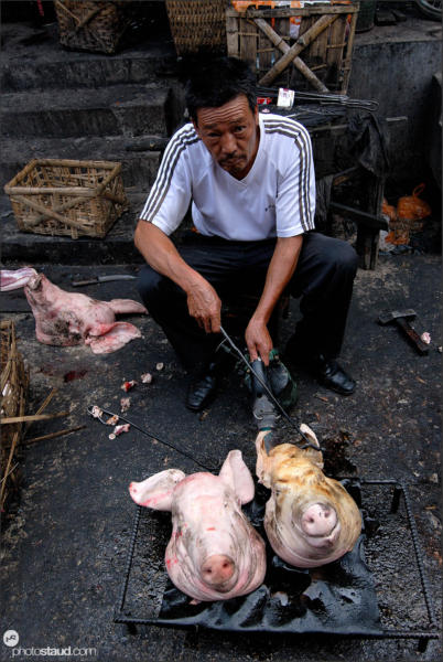 Of pigs and men, Lijiang Zhongyi market, Yunnan, China