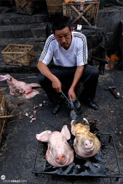 Of pigs and men, Lijiang Zhongyi market, Yunnan, China