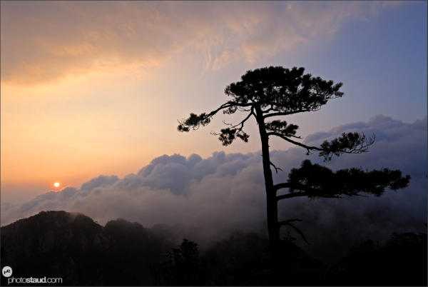 Sunrise over the Sea of Clouds - Yellow Mountains – Huangshan, Anhui, China