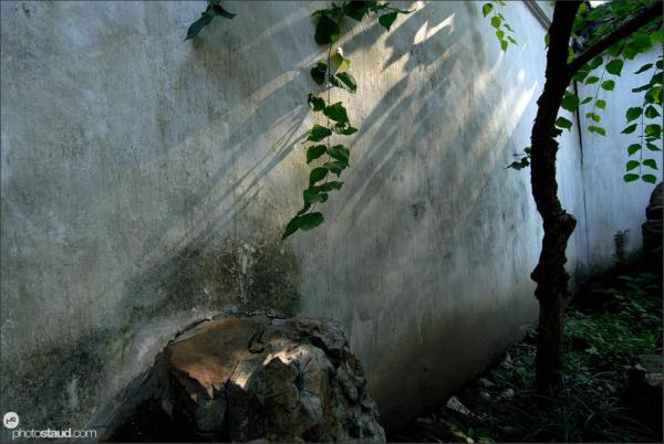 Garden to Linger In, Suzhou, UNESCO site, Jiangsu Province, China